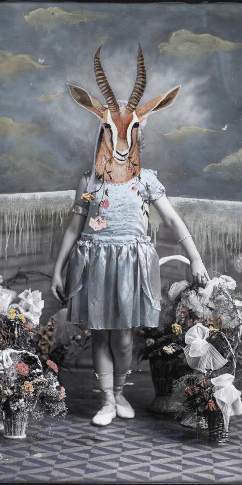 Gazelle Girl Eating Flowers | 60 x 40