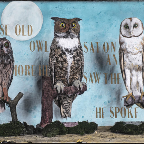 The Wise Old Owls | 40 x 60""