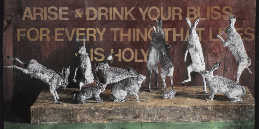 """Arise and Drink Your Bliss 